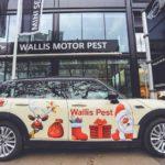 Ajándékgyűjtést szervez a Wallis Motor Pest