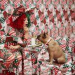 Sia új dalával indul a karácsonyi szezon
